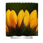 Petales De Soleil - A12 Shower Curtain