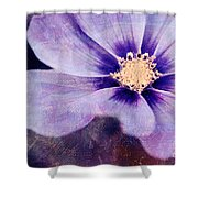 Petaline - 06bt04b Shower Curtain