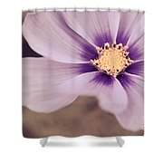 Petaline - P04a Shower Curtain