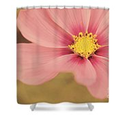 Petaline - P05a Shower Curtain