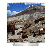 Petrified Forest 2 Shower Curtain