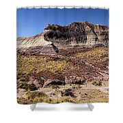 Petrified Forest Badlands Shower Curtain