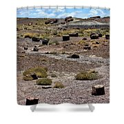 Petrified Forest National Park 2 Shower Curtain