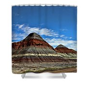 Petrified Forest National Park Shower Curtain
