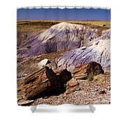 Petrified Logs In The Badlands Shower Curtain