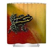 Phantasmal Poison Dart Frog Shower Curtain