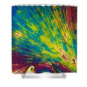 Phenylalanine Shower Curtain by Michael W. Davidson