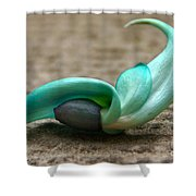 Phillipine Jade-vine Flower Shower Curtain