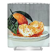 Piatto Con Arance Shower Curtain