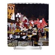 Piccadilly Night Shower Curtain
