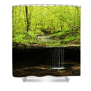 Pickle Spring In Missouri Shower Curtain