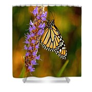 Picky Monarch Shower Curtain