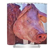 Pig In The Market Shower Curtain