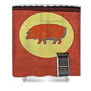 Pig On A Wall Shower Curtain