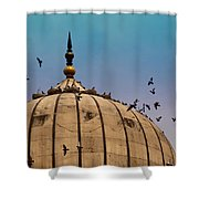 Pigeons Around Dome Of The Jama Masjid In Delhi In India Shower Curtain