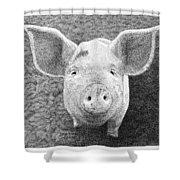 Piglet Shower Curtain