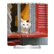 Pika Boo Shower Curtain