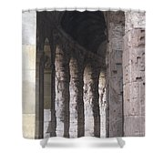 Pilars In Rome Shower Curtain