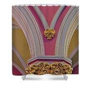Pillar Details Shower Curtain