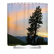 Pine And A Painted Sky Shower Curtain
