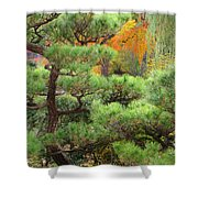 Pine And Autumn Colors In A Japanese Garden II Shower Curtain