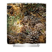 Pine Cones Shower Curtain