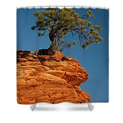 Pine On Rock Shower Curtain