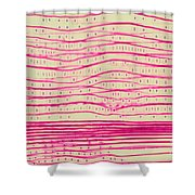 Pine Pits And Stem Shower Curtain