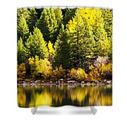 Pine Reflection At Georgetown Lake Colorado Shower Curtain