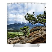 Pine Tree And Mountains Shower Curtain
