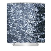 Pine Trees Covered In Snow, Les Arcs Shower Curtain