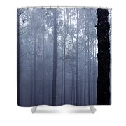 Pine Trees In Cloud In The Forest Corona Shower Curtain