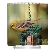 Pine Warbler 3 Shower Curtain