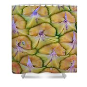 Pineapple Eyes Shower Curtain
