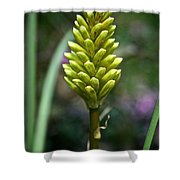 Pineapple Popsicle Shower Curtain
