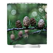 Pinecone Party Line Shower Curtain