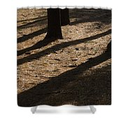 Pines Of Msu Shower Curtain