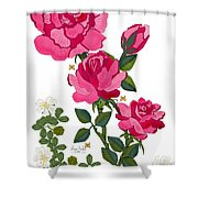 Ping Shower Curtain