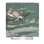 Pinguis Shower Curtain