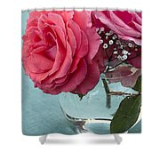 Pink And Aqua Roses Shower Curtain
