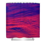Pink And Purlple Morning Shower Curtain