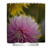 Pink And Yellow Shower Curtain