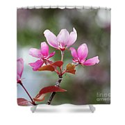 Pink Apple Blossom 2 Shower Curtain