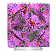 Pink Asters Energy Shower Curtain