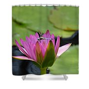 Pink Beaded Wings Shower Curtain