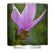 Pink Blossom Shower Curtain by Susan Candelario