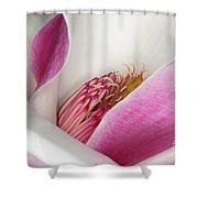 Pink Bursting Color Shower Curtain