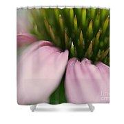 Pink Cone Flower Shower Curtain
