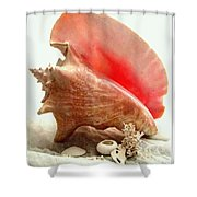 Pink Cong Shell Shower Curtain