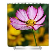 Pink Cosmos Picotee And Bee Shower Curtain